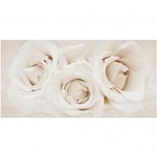 Декор Opoczno CAMELIA INSERTO FLOWER 9×600×297